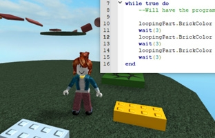 Picture of Roblox player and code